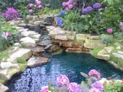 Keep your water healthy and blue with Organic Pond pond dyes and treatments.  www.organicpond.com: Water Gardens, Water Features, Outdoor, Garden Ponds, Waterfeature, Flower