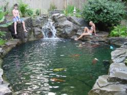 koi pond/swim pond. how cool is that!  This would be awesome in our back yard!: Backyard Ideas, Outdoor, Natural Swimming Pools, Natural Pools, Swimming Pond, Garden