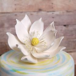 Large Lotus Flower (Water Lily) from gumpaste cake topper perfect for cake decorating fondant cakes. | CaljavaOnline.com: Cake Accessories, Cake Tutorial, Cake Flowers, Lotus Flowers, Lotus Flower Cake, Fondant Cakes