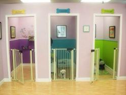 Look what a woman built in her basement for her foster pets!: Idea, Dogs, Foster Dog, Dream House, Puppy Room