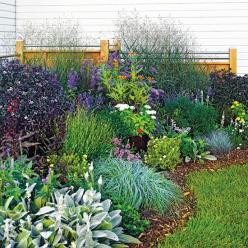 Love the look of this....Low-care plantings look great and don't take up a lot of time. This planting incorporates tough plants such as daffodils, switchgrass, blue caryopteris, blue fescue, and purple-leaf Joe Pye weed.: Low Care Planting, Garden Ide