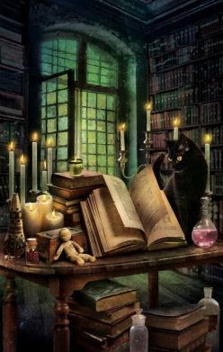 Magnus's least favorite alchemist, Agrippa Thoth, happens to boast an amazing library.: Fantasy, Books, Witchy, Black Cats, Witches, Art, Rochelle Staab
