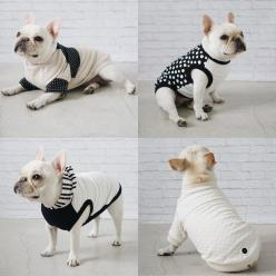 Modern Dog Clothing and Accessories from Pipolli: French Bulldogs, Bulldog Francese, Bulldog 3, Pet, Dapper Dogs, Dog Clothing
