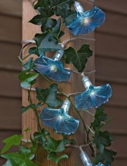 Morning Glory Lights are solar-powered and make a lovely evening show. Our customers are loving them!: Morning Glories, Garden Ideas, String Lights, Mornings, Solar String, Glory Lights, Easy Garden Light Idea