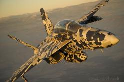Naval Aviation as you've never seen it. Some of the coolest pictures of the U.S. Navy hardware at work  Source: http://theaviationist.com/2012/06/19/fly-navy/: Military Aircraft, Airplane, Digicam Paint, Paint Job, Super Hornet, Planes, Fighter Jets