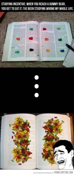 Never enjoyed studying so much : ): Gummy Bears, Studying Incentive, Good Ideas, Giggle, School, College, Funny