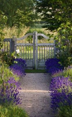 one day I will have a garden with such a lovely garden path, someplace to ramble and muse about the sense of beauty... from It's About Time blog: Ideas, Secret Garden, Gardengates, Garden Gates, Outdoor, Gardening, Gardens, Lavender Path