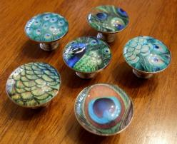 Peacock room! Set of 6 PEACOCK FEATHER Glass Domed Photo by JoanOfArtCreations, $36.00: Door Handle Knobs, Glass Knobs, Domed Knobs, Knob Pulls, Peacock Knobs, Domed Photo, Door Knobs, Peacock Decoration, Handles Knobs