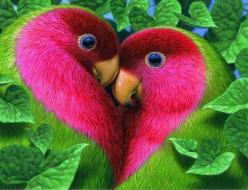 Pink and green heart lovebirds in leaves: Animals, Nature, Color, Beautiful Birds, Photo