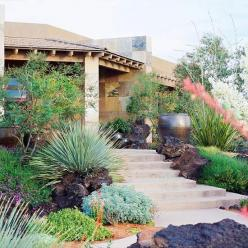 Plantings, rock and container plantings accent and beautify the path to the front door.: Backyard Ideas, Yard Landscape, Landscaping Ideas, Outdoor, Front Yards, Gardening, Landscapes, Landscape Ideas, Desert Landscaping