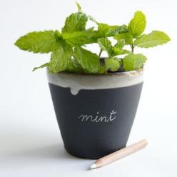 Plants to grow and people to feed.: Chalkboards, Black And White, Chalk Board, Chalkboard Paint, Ceramic Planters, Diy, Garden, White Ceramics