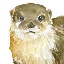 River Otter Watercolor: Art Teacher, Art Inspiration, Of The, Otter Watercolor, Lawn Fawn, Craft Ideas, Around