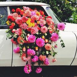 Satur-day dreaming florals by @catelockebotanica + photo by @foodwinedine #FloralHunters #ForageLikeABoss: Flower Bomb, Floral Delivery, Satur Day Dreaming, Wedding Cars, Beautiful Flowers Colors, Dreaming Florals, Spilled Blooms, Flower