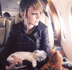 She was completely exhausted from all the other naps she had taken that day. -Taylor Swift-: Olivia Benson, Cats, Taylorswift, Alison Swift, T Swift, Taylor Swift Cat, Completely Exhausted, Hand Hand