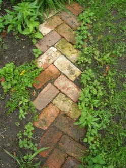 Simple walkway idea, reusing old bricks. Could also be used as a border.: Brick Walkway, Brick Path, Idea, Reclaimed Brick, Garden Paths, Old Brick, Gardening Outdoor, Recycled Brick