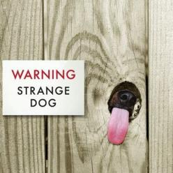 Strange dog, so funny. I could put this in my house. Definitely describes one of my pooches.: