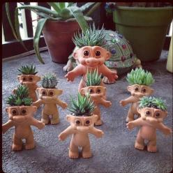Succulents. And trolls. It makes so much sense.: Ideas, Succulent Troll, Troll Succulent, Troll Dolls, Delicious, Troll Planters, Garden