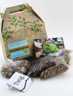 Terrariums are a great way to keep gardening all year long, and this D.I.Y. terrarium kit makes it easy to get started!: Terrarium Kits, Diy Kits, Sized Container, Diy'S, Terrariumkit, Gallon Sized, Diy Terrarium, Gardening