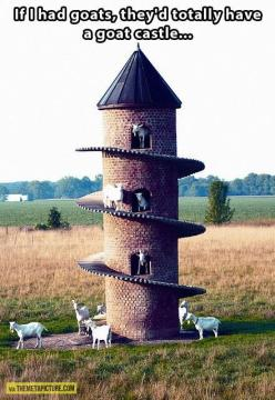 Thank you for the wonderful idea! I'm going to show this to my best friend when he builds his goat shelter. LOL!! They do love to climb!!: Farm, Goats, Goat Castle, Animals, Idea, Goat Tower, Funny, Castles