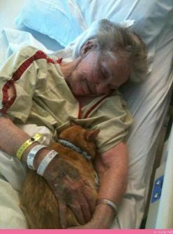 The Hospital let this lady that was Living in Her Last Few Days Bring Her Cat in to Visit Her... I instantly was in tears seeing this.: Cats, Animals, Heart, Days, Hospital Allowed, Pet, Visit, Lady S Cat, Hospitals