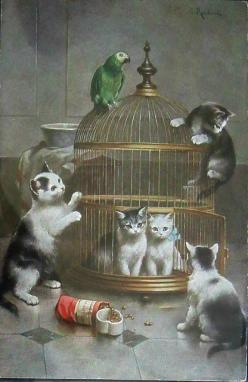 The rest of you will have to find some other cage to hang out in...that includes you,  Mr. Parrot.: Cat Art, Art Cats, Parrots, Cats Art, Birdcage, Mischievous Kittens, Cats And Kittens, Photo
