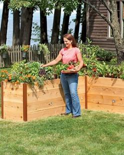 This is perfect for my yard! One all along the back or side fence. : Gardening Yard, Garden Ideas, Tall Bed, Raised Beds, Gardening Designs Beds, Garden Beds, Outdoor Spaces, Cedar Beds