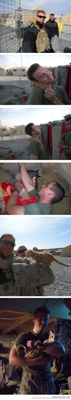 This is the sweetest thing I have ever seen: Us Marines, Kitty Rescued, Kitten, Animals, Cat, Hero, Cute Kitty War Soldiers