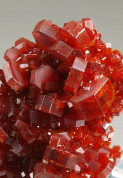 Vanadinite - Morocco: Morocco Gemstoneserendipity, Crystal Rocks Gemstones, Minerals Crystals Gems, Rocks Minerals, Minerals Gemstones Crystals, Rocks Crystals, Gemstones Crystals Rocks, Rocks Gemstones Minerals, Minerals Rocks Gemstones