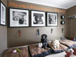 Vern Yip's Dog Den - Peek Inside the Homes of HGTV Stars on HGTV      This is a great idea if you have a lot of animals. Their own room. We could do it but no way for them to go outside from that room.: Hgtv Host, Idea, Dogs, Dog Bedroom, Protection Y