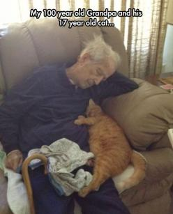 Very old friends…: Cats, Old Mans, Animals, Sweet, Friends, Pet, 100 Year, 17 Year, Photo