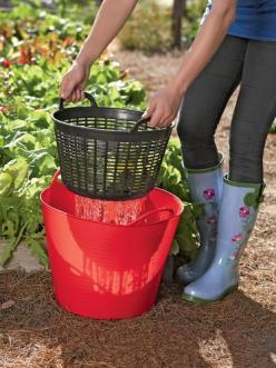 Very smart! Rinse veggies right in the garden and then re-use the water on the plants. Plastic bucket and small laundry basket/colander from Dollar Tree would do nicely. | protractedgarden: Green Thumb, Idea, Dollar Tree, Dollar Store, Gardening Outdoor,