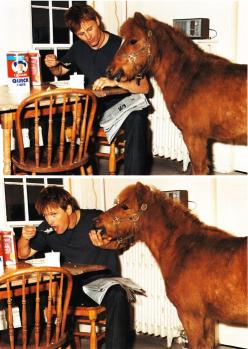 Viggo and a pony. Your argument is invalid.: Lotr, Viggo Mortensen, Equine, Horses, Ponies, Middleearth, Middle Earth, Actor, Animal