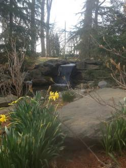 Waterfall created by The Pond Doctor. #WaterfallWednesday: Waterfall Wednesday, Waterfall Created, Pond Doctor, Ponds Waterfalls, Waterfallwednesday, Outdoor Life