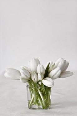 White on white #flowers #vase. I love flowers in the house :). Love, Sarah www.goachi.com: White Flowers, Beautiful, White Tulips, Simple White, Fresh Flowers, Bloom, Floral, Flower, Favorite Flower