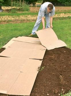 Wish I would have know this trick over 4 years ago. It would have saved countless hours of taking sod out & would have produced healthy soil also! Put cardboard & compost over grass in fall & by spring... you have healthy beds to plant in!: Ga