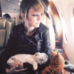 X Taylor Swift Cat: Olivia Benson, Cats, Alison Swift, Taylorswift, T Swift, Taylor Swift Cat, Completely Exhausted, Hand Hand