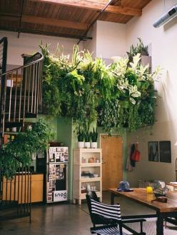 10 Tell-Tale Signs that Your Home Style Is: Bohemian | Lol this is funny and accurate.: Interior, Idea, Living Wall, Green Wall, Indoor Garden, Vertical Garden, House, Space, Indoor Plants