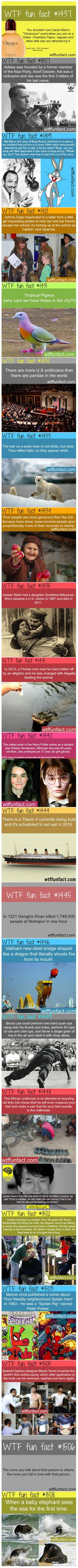 22 Fun and Interesting Facts You Won't Believe Are True - TechEBlog: Wtf Fun Fact, Baby Elephant, Crazy Fact, Wtffunfacts Funny, Wtffunfacts Weird, Interesting Fun Fact, Weird Fun Fact