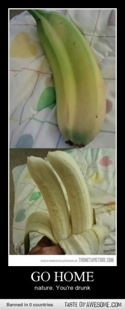 Am i the only one who thinks this is awesome and would love to find a double banana?: Giggle, Bananas, Double Banana, Funny, Twin Banana, Humor, Funnies, You Re Drunk