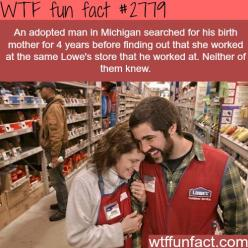 An Adopted man and his mother, amazing story - WTF fun facts: Wtf Facts, Facts Hacks, Mother, Wtf Fun Facts, Crazy Facts, Adopted Man, Small World, Random Facts