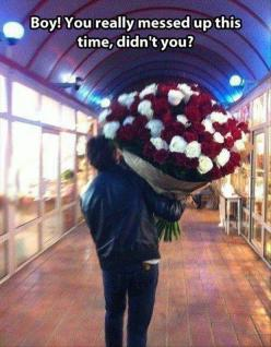 Apology  via roses!!!!!@@@@@@   Dump A Day Funny Pictures Of The Day - 110 Pics: Rose, Funny Pictures, Big Time, Funny Stuff, Funnies, Humor, Boy, Flower