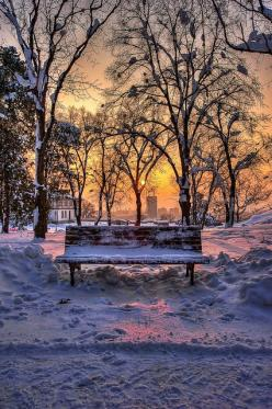 ~~Bench in a park in winter ~ picturesque winter sunset, Belgrade, Serbia by Uros78~~: Winter Snow, Park Benches, Parks, Winter Wonderland, Winter Sunset, Places, Beautiful Winter, Photo