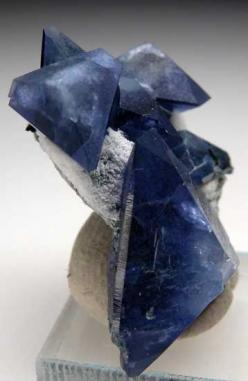 Benitoite  Benitoite Gem Mine, San Benito Co., California thumbnail - 2.9 x 2.2 x 1.4 cm: Crystals Minerals Gems, Crystals Gemstones Rocks, Gems Minerals Crystals Rocks, Crystals Minerals Stones, Aagems Minerals Unsorted, Crystals Shells Rocks, Gem Minera