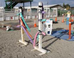 Bombproof Your Horse the Mounted Patrol Training Way with Horse Desensitization | EquiSearch: Mounted Patrol, Horse Stuff, Horses, Training Horse, Patrol Training, Google Search, Horse Desensitization, Horse Obstacle, Horse Stable Ideas