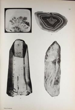 Brauns, Reinhard Anton (1903): Crystals Drawing, Drawing Illustration Painting, Inspiration Drawing Art, Dead Hearts, Reinhard Anton, Anton 1903, Crystal Illustrations, Art Photography Textiles, Idea Ofstones