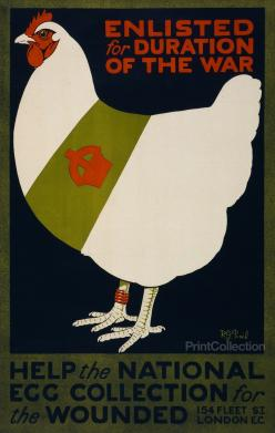British poster, 1915: Enlisted for duration of the war. Help the national egg collection for the wounded.: Vintage Posters, Chicken, Eggs, Propaganda Poster, Wwi Poster, Wwii Posters, National Egg