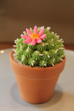 Cactus cupcakes....love these <3: Cowboy Cupcakes, Cupcakes Vitalmag10, Cactus Cupcakes Love, Clay Pot, Creative Cupcakes, Cupcakes Cakepops, Cupcakes Flowers
