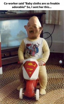 Can't stop laughing: Baby Sloth, Babies, Sloths, Giggle, Funny Stuff, Funnies, Humor, Kid