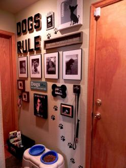 Create your own doggie collage on a wall.  This was easy and so much fun to do.  I think my dogs are a little spoiled...: Idea, Pet, Mud Room, Doggie Collage, Dog Stuff, Animal
