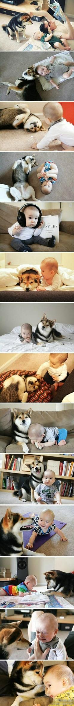 dogs and babies are so cute: Babies, Dogs, Sweet, Best Friends, Shiba Inu, Puppy, Animal, Kid